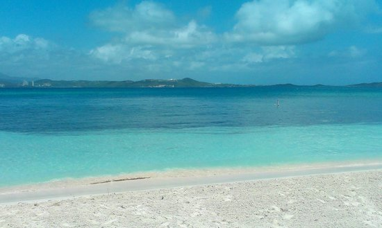 Palomino Island: Actual Beach...Beautiful Huh?