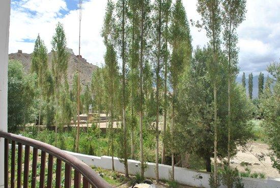 Reenam Hotel: View from the balcony