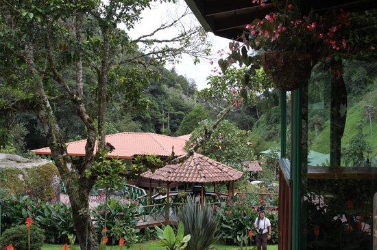 Trogon Lodge San Gerardo de Dota: Trogon Lodge