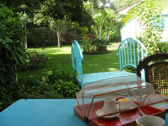 Casa de las Tias: Wonderful breakfast in the beautiful tropical garden.