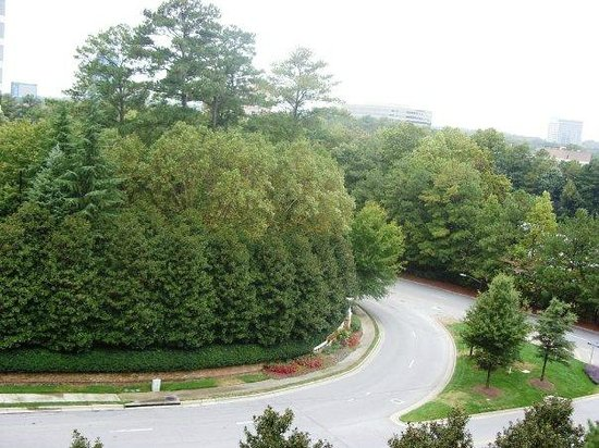 Hilton Garden Inn Atlanta Perimeter Center: From Room