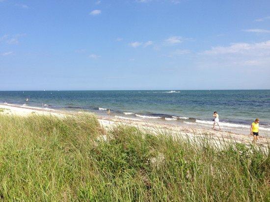 Seagull Beach: Beach