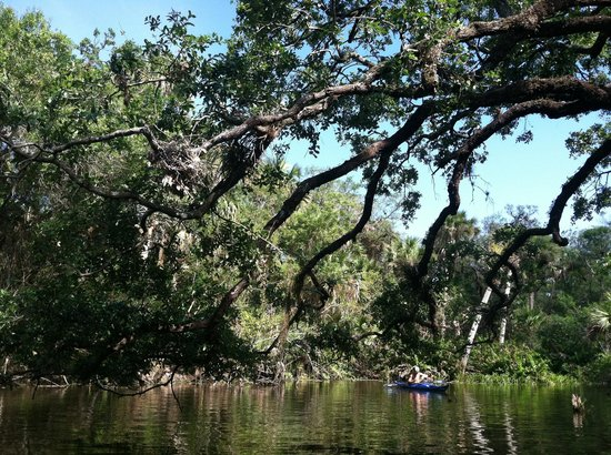 Ten Mile Creek Preserve