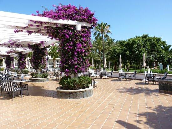 Hotel Riu Palace Meloneras Resort: La terrasse du déjeuner (qui sera sans aucun doute améliorée...).