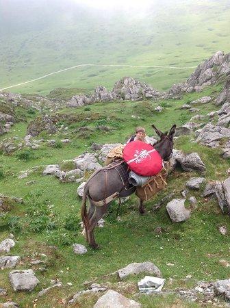 Association Petits Pas: Crossing between 2 valleys