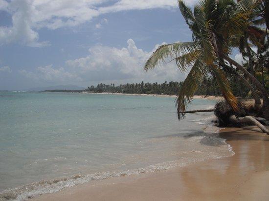 Grand Bahia Principe El Portillo: Walk on the beach