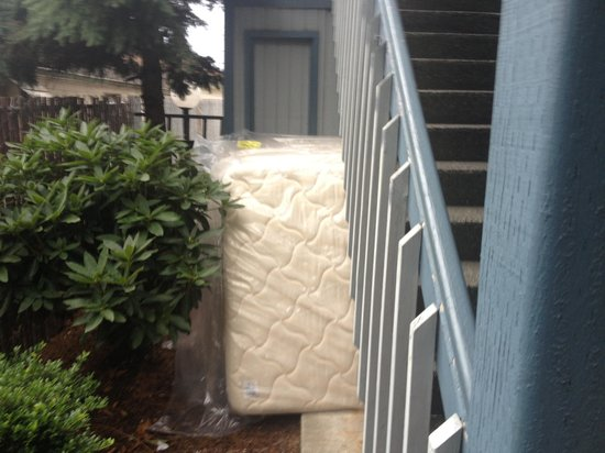 Travelodge Seattle North/Edmonds: Such a lovely ambiance....enjoyed the stack of mattresses under the stairs