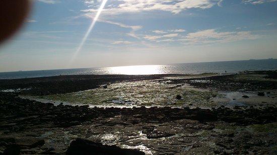 Hôtel de la Plage : Beach @ Audresselles