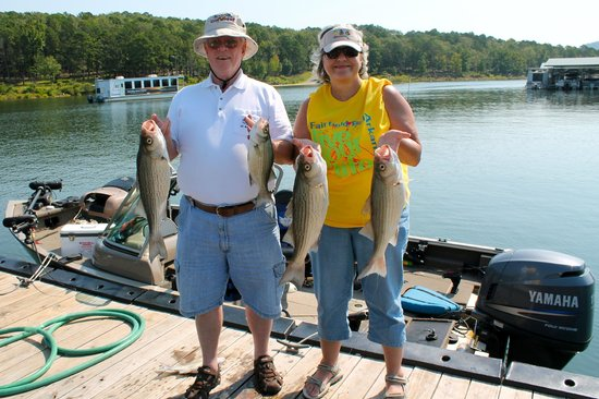 Fairfield Bay, AR: Great Fishing