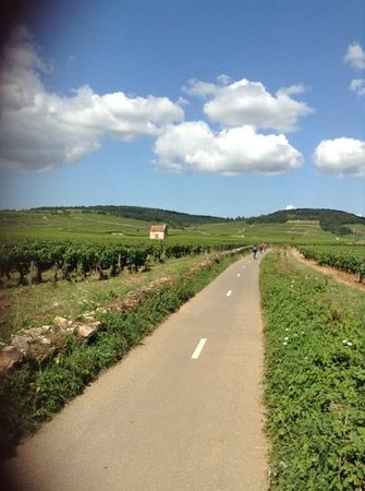 Bourgogne Randonnées : Beaune bike route
