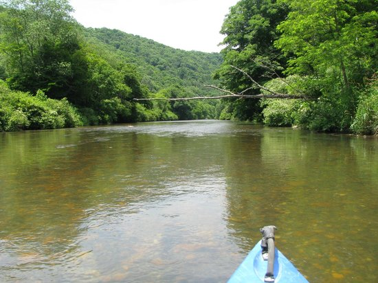 River and Earth Adventures, Inc: You can float and paddle too.