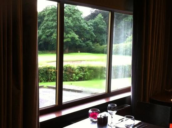 Dalziel Park Hotel & Golf Club : view from restaurant to golf course
