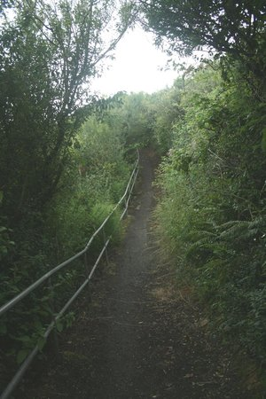 Whitehead, UK: The start of the upper path.