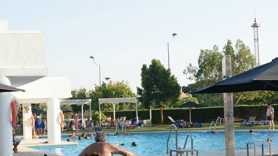 Barcelo Sevilla Renacimiento: Vistas de la piscina hacia el parque de isla mágica y jardines.