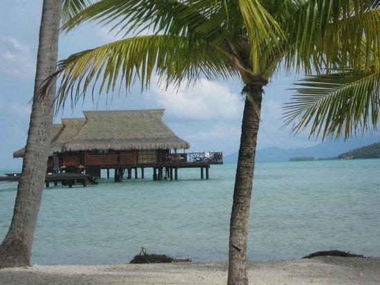 Vahine Island - Private Island Resort: Farés sur pilotis