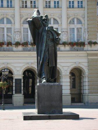 Svetozar Miletic Monument: Pomnik