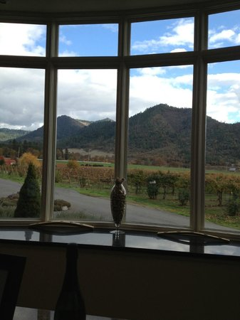 Troon Vineyard: View from the tasting room