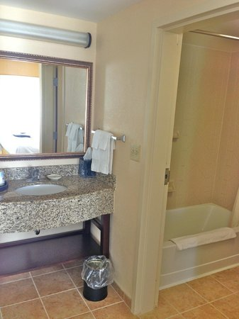 Hampton Inn & Suites Tampa/Ybor City/Downtown: Bathroom