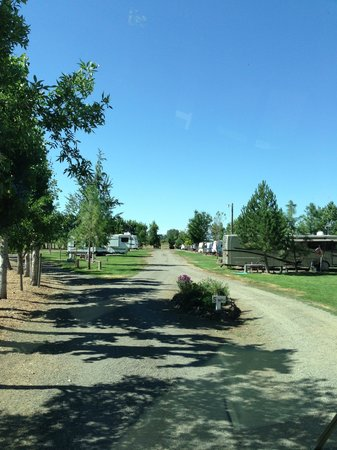 Yakima River RV Park: Campground View