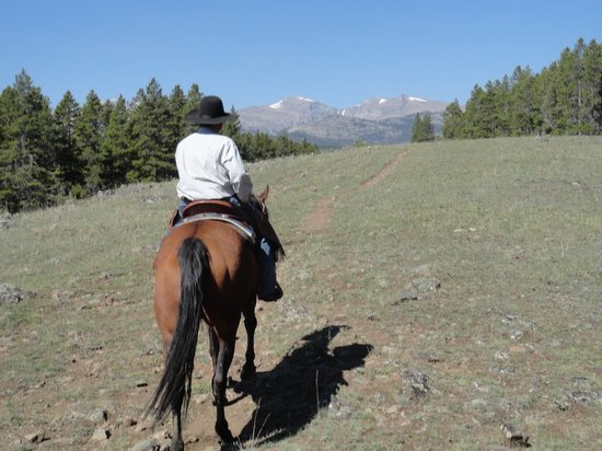 South Fork Mountain Lodge: Trail Riding through the Big Horns