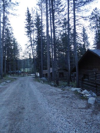 South Fork Mountain Lodge: Cabins along road in early morning
