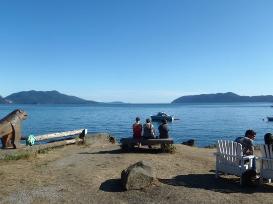 Doe Bay Resort & Retreat : Looking out from the resort