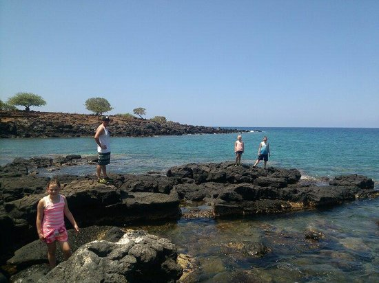 Lapakahi State Historical Park: Lava rock beach with tide pools.