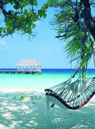 Cocoa Island by COMO: Island Life