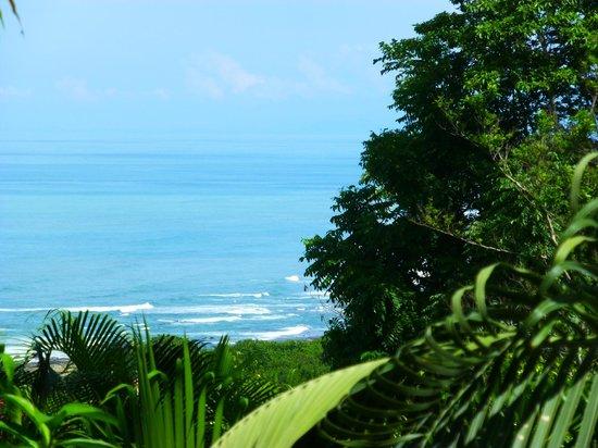 Hotel Vista de Olas: View from Villa #!