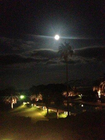 Resort Hotel Kawana : 満月の夜の大島コースの夜景