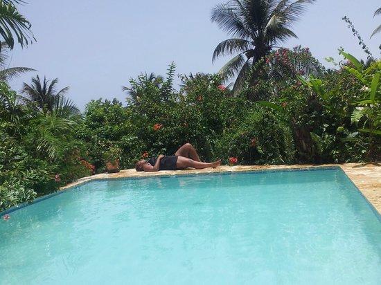 SurfBreak Cabarete: pool