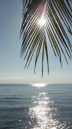 Sembiran, Indonesia: sole dietro il palmizio
