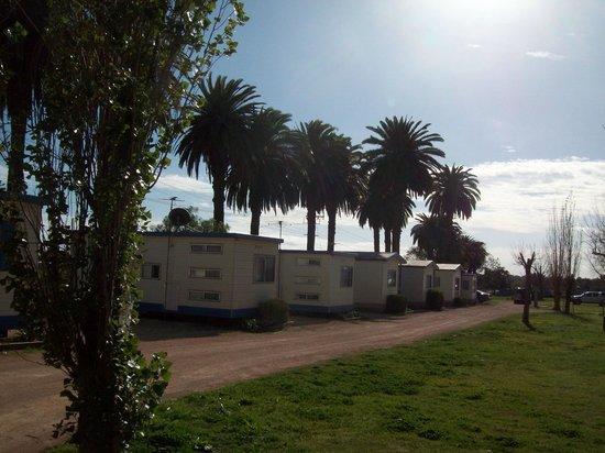 The Palms Caravan Park: A row of the park cabins