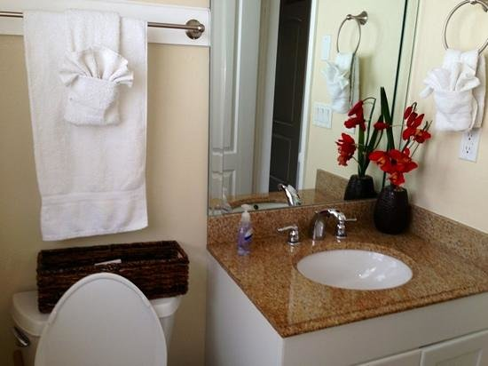Coconut Villas of Dunedin: our little bathroom