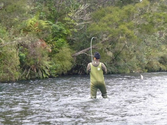 TroutBeck Fishing Lodge: fish jumping
