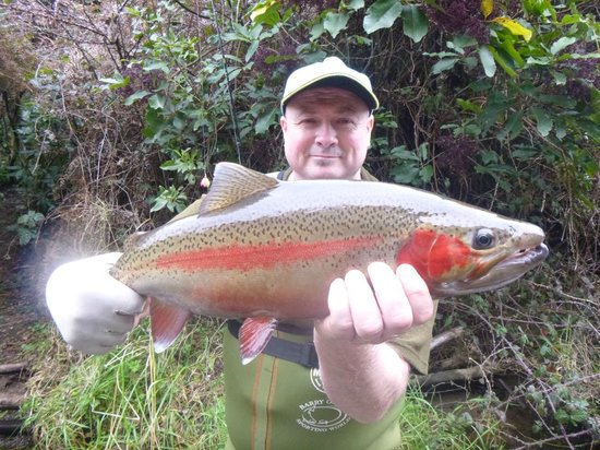 TroutBeck Fishing Lodge: fishing