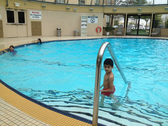 Sheraton Toronto Airport Hotel & Conference Centre: Nice Swimming Pool