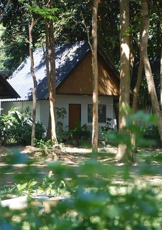 Lanta Coral Beach Resort: bungalows with real nature
