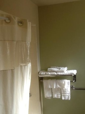 Days Inn Roswell: bathroom was spacious with light from small window; shower not wheelchair accesible but clean!
