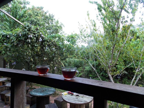Paganakan Dii Tropical Retreat: Coffee & tea in the morning