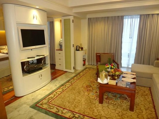 Royal Wing Suites & Spa: living room