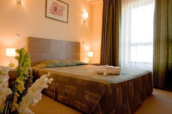 Vitosha Park Hotel : Suite