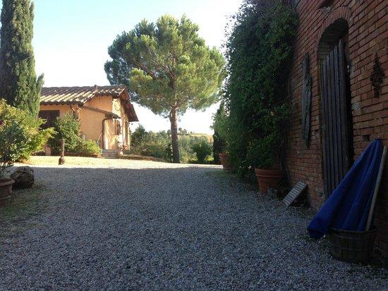 Il Grande Prato : kig til gården