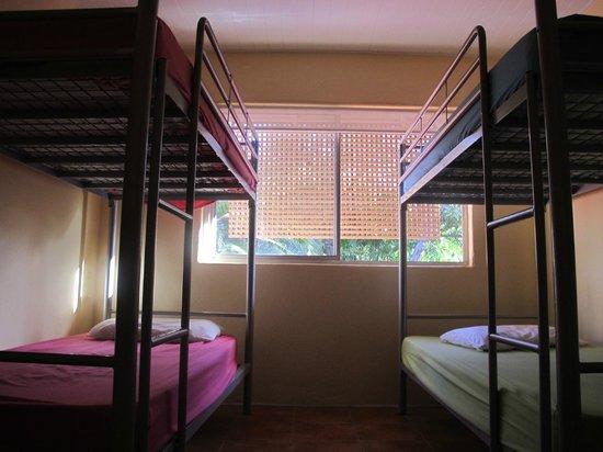 Dolphins Beach House: dorm room