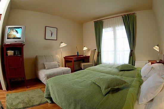 Szent Orban Erdei Hotel: Guest Room