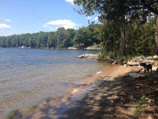 Chandos Lake