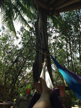 Hostel & Cabanas Ida y Vuelta Camping: Área común y hamacas