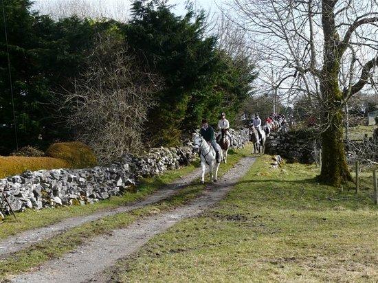 Ashford Equestrian Centre: Country Lane