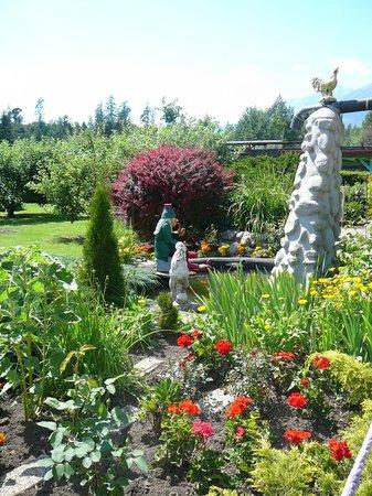 Pension Vila Barbara: Garden