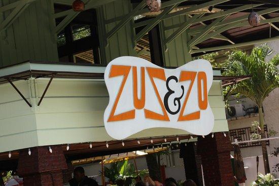 c'était jour de fête , spectacle dans le jardin de ZUS & ZO